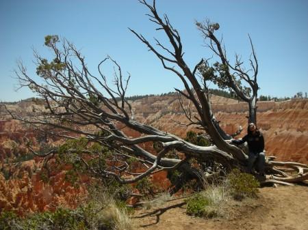 Brice Canyon 03