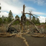 Sunset Crater 04