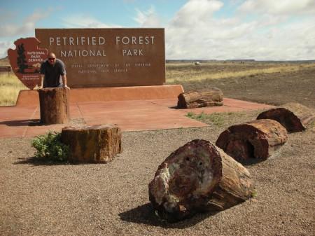 Pietrified Forest 01